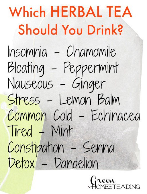 Which Herbal Tea Should YouDrink? https://t.co/32C9tZaGlI https://t.co/p8RZk9gL49