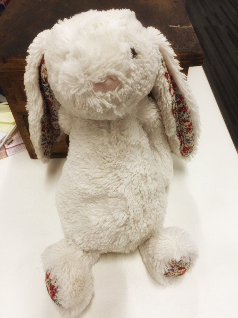 I found this bunny on the Boardwalk. Am afraid there's a bereft kid somewhere. I want to reunite them. Help? RT? https://t.co/7GeqmWO37l