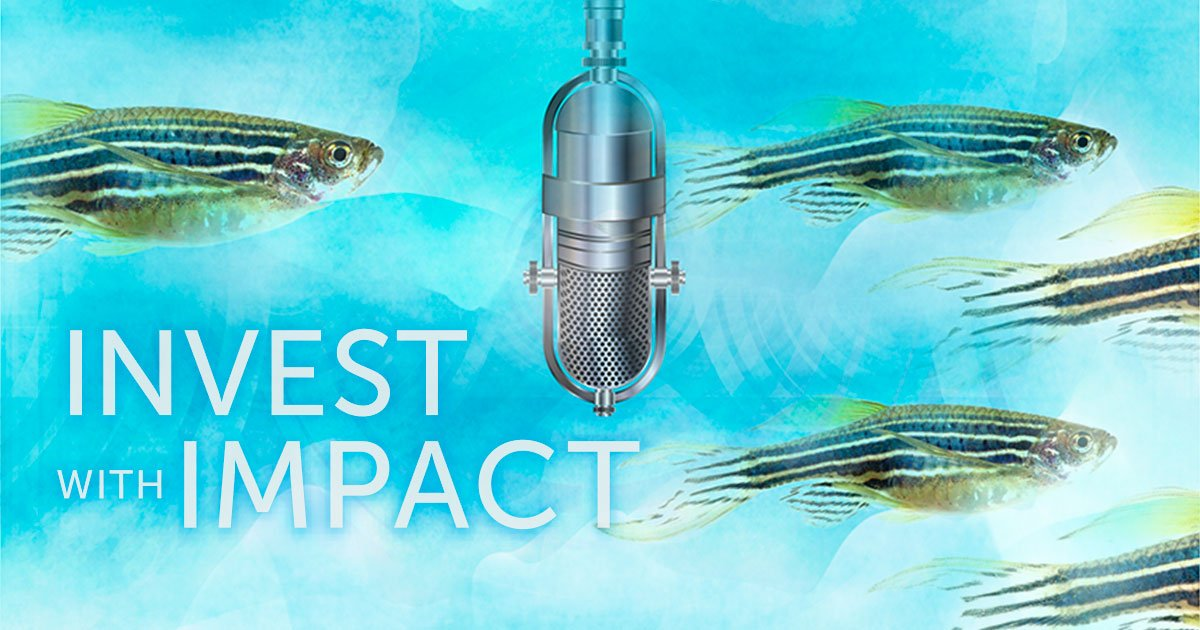 What's connection between #zebrafish & reversing #deafness in humans? #InvestWithImpact  https://t.co/4Of76I4PET