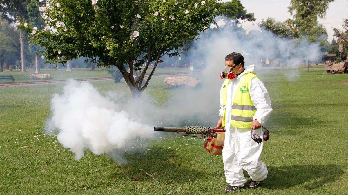 Virus Zika, in Guatemala 105 casi di pazienti infetti