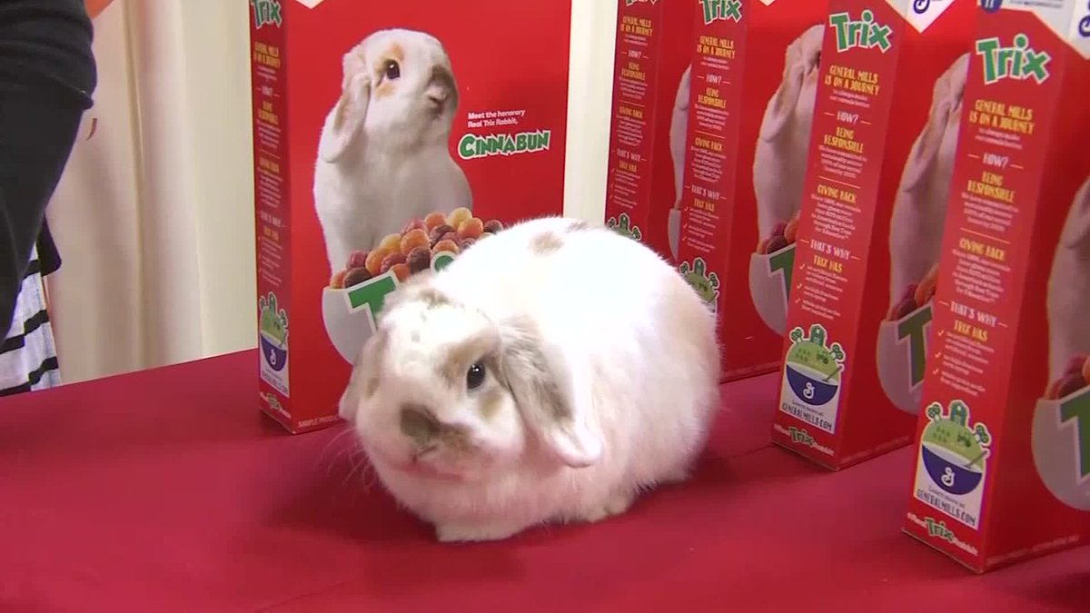 A rabbit from Texas is the new face of Trix cereal. https://t.co/9cCOO31m6V https://t.co/K3Z6TMOeqQ