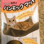 猫用ハンモックを猫が間違って使った結果!