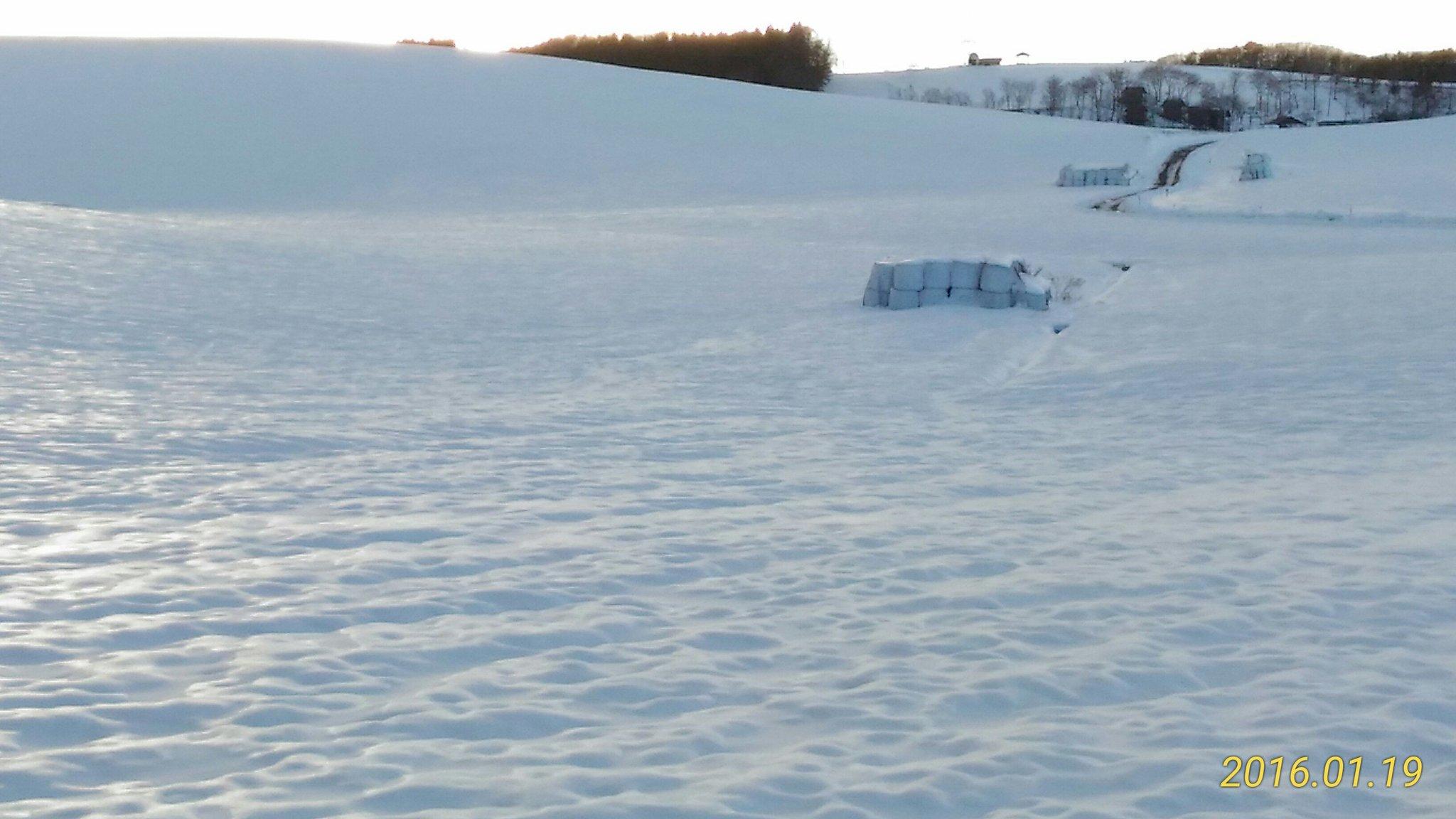 鹿角平は雪原になりました。