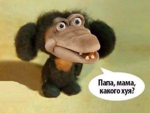 Пресс-секретарь Путина поддержал угрозы Кадырова в адрес инакомыслящих в России - Цензор.НЕТ 5700