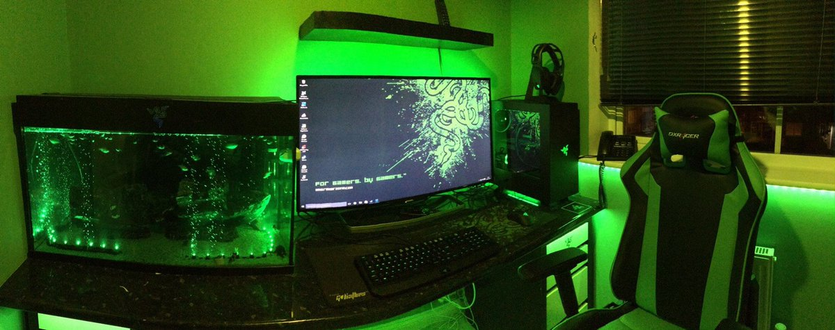 R Z R On Twitter Quot Watusi S Battlestation 💚 Insider