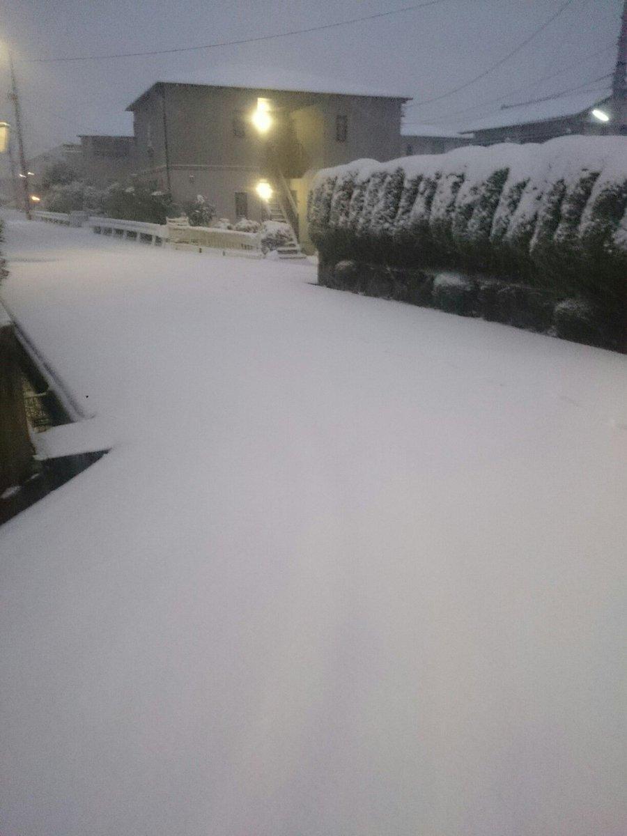 これアカンやつや(名古屋) #雪 https://t.co/RPeD0o3Fmg