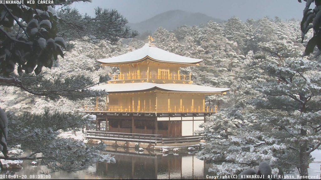 光り輝く雪化粧の金閣寺!朝8時40分の様子です。shokoku-ji.jp/k_live.html#京都 #雪 pic.twitter.com/Cmuv5eKmrw
