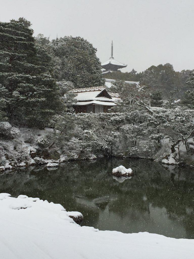 皆さん、お待たせしました。今年初の雪景色です。如何でしょうか? https://t.co/bQCCE2JFP9