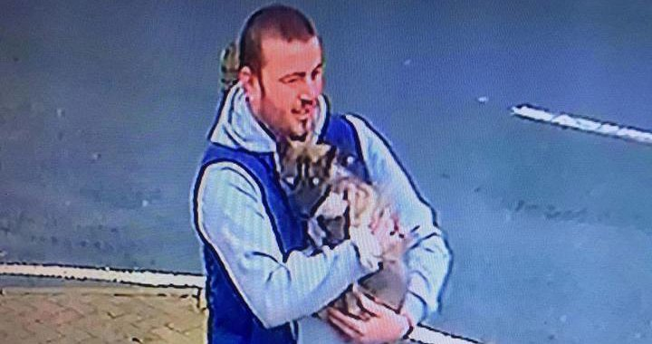 #STOLEN PUPPY #Wallasey area. Do you know this man? PLEASE SHARE! #dog #lost https://t.co/y70Kswdgiv https://t.co/Cyusz64une