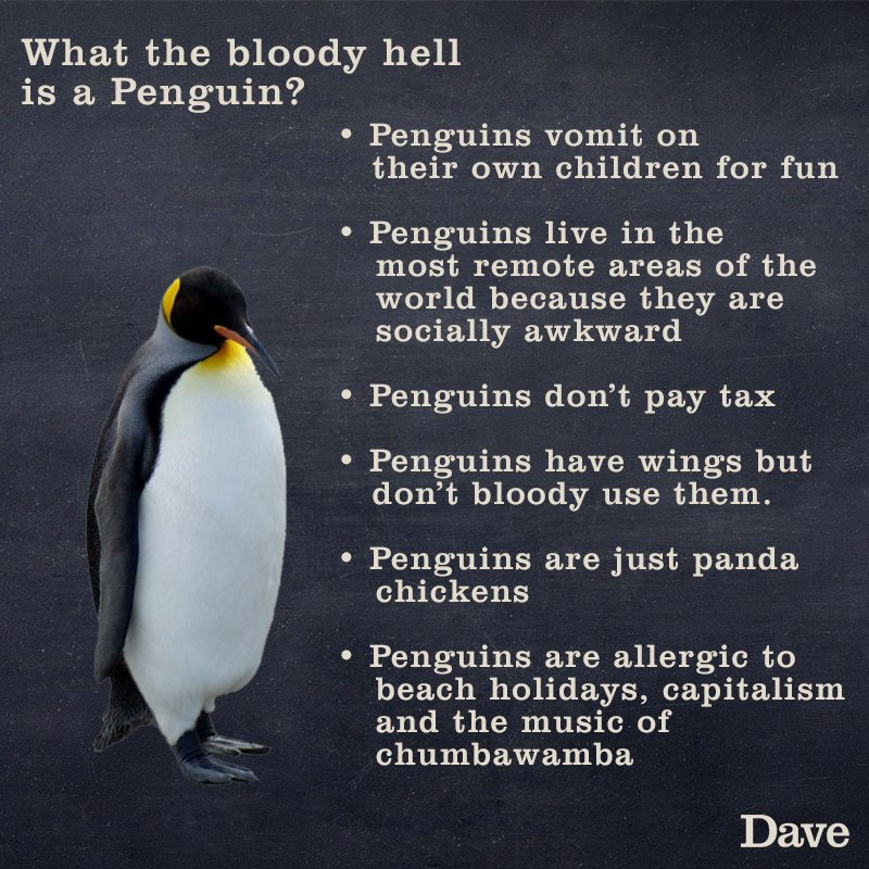 It's #penguinawarenessday. How much do you know about Penguins? https://t.co/rU7SCCF8Ba