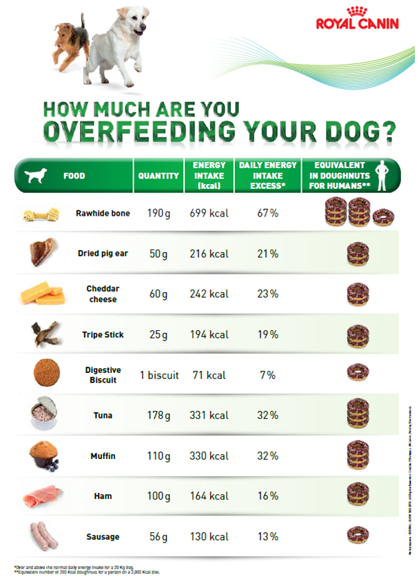 Weight Loss Dog Food Comparison