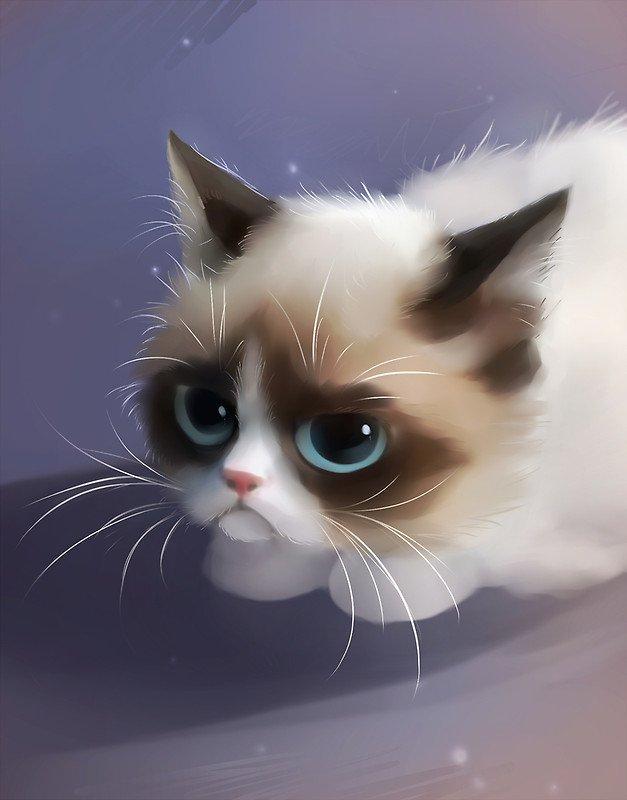 Картинки коты с большими глазами нарисованные