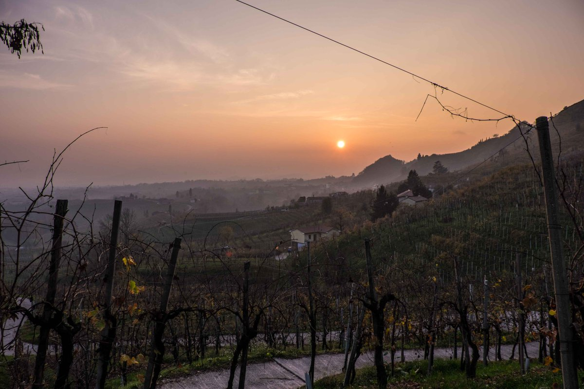 Vine-Clad Hills of Soave & Conegliano Valdobbiadene now registered as part of Italy's historical rural heritage https://t.co/P93Tx7DUeC