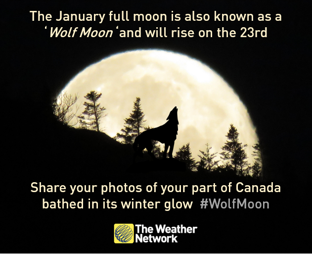 Will you see a #WolfMoon rising this weekend? Share the view and your photos could be on TV https://t.co/youuZLWQyn