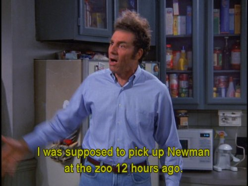 Seinfeld Quotes Interesting Seinfeld Quotes Seinfeldquotes_  Twitter
