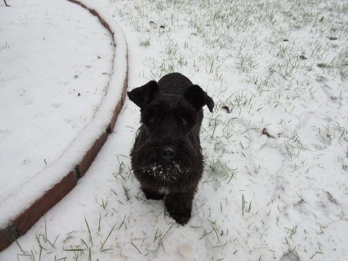 first snow experience
