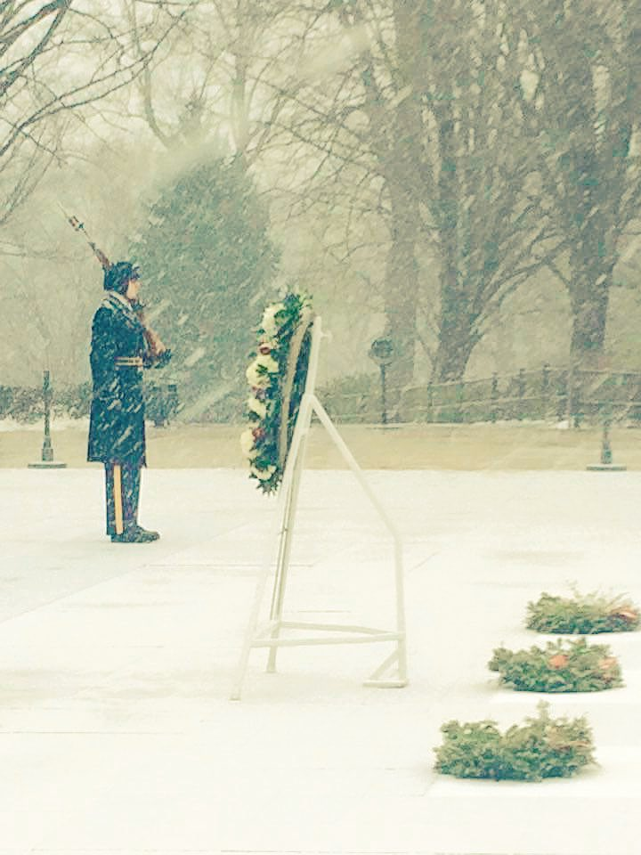 Courtesy @USArmy -- Old Guard Soldiers at Tomb of the Unknowns #snowmaggedon2016 #awesome https://t.co/FPWM1Oav2Z