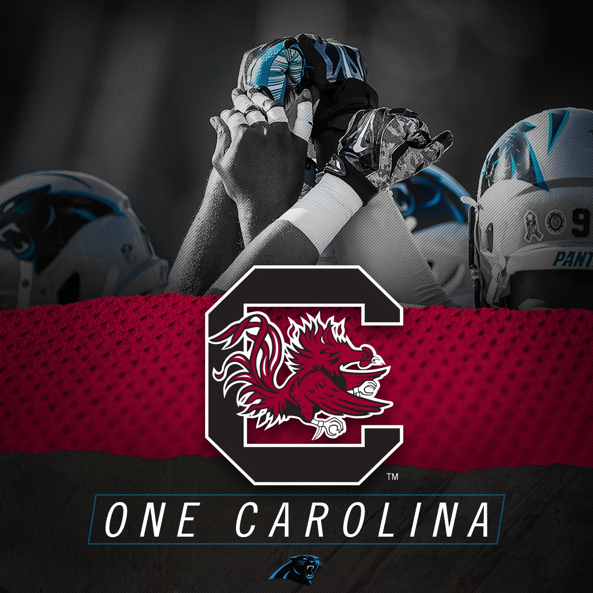 Good luck, @Panthers!! #KeepPounding  #OneCarolina #Gamecocks https://t.co/Zt10qzGxHo