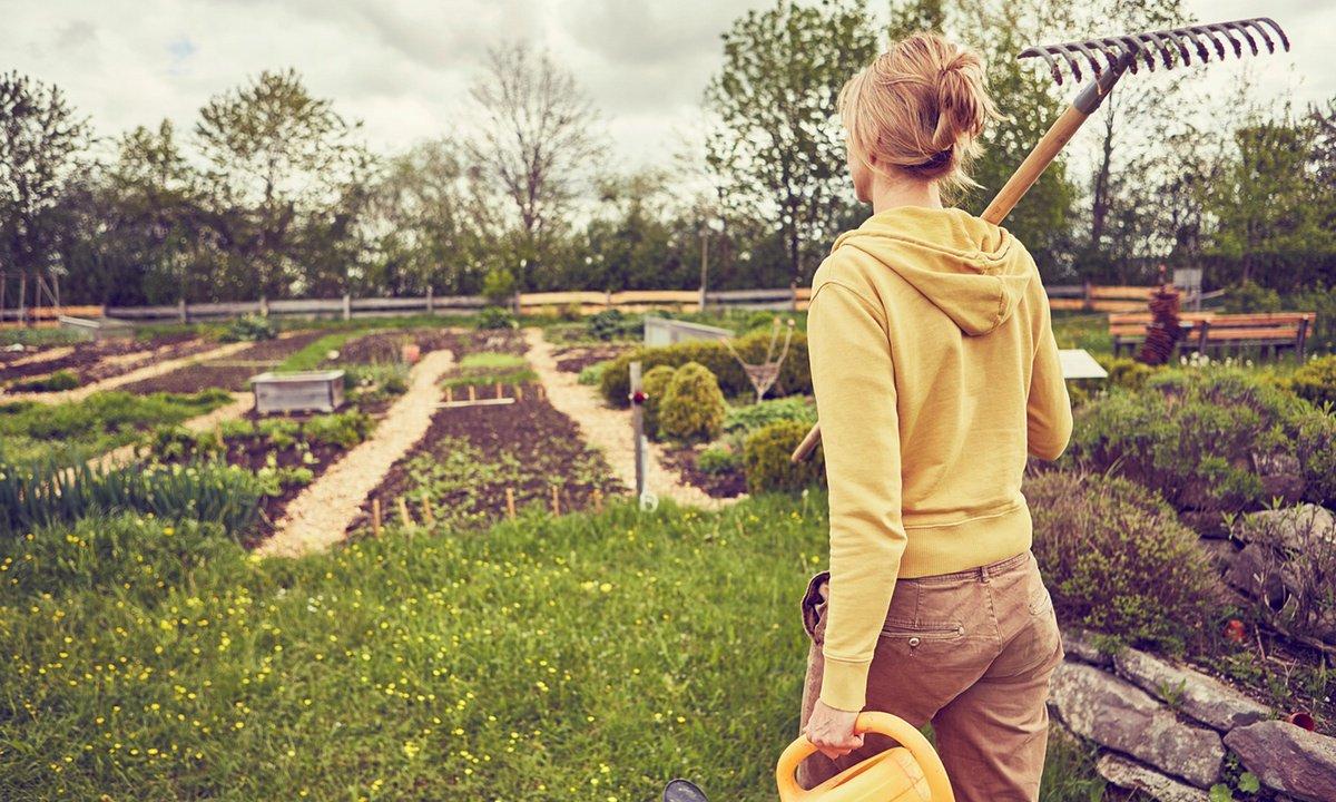 Is gardening your medicine? https://t.co/kL9cxnSLmr https://t.co/gAyeJ9si07