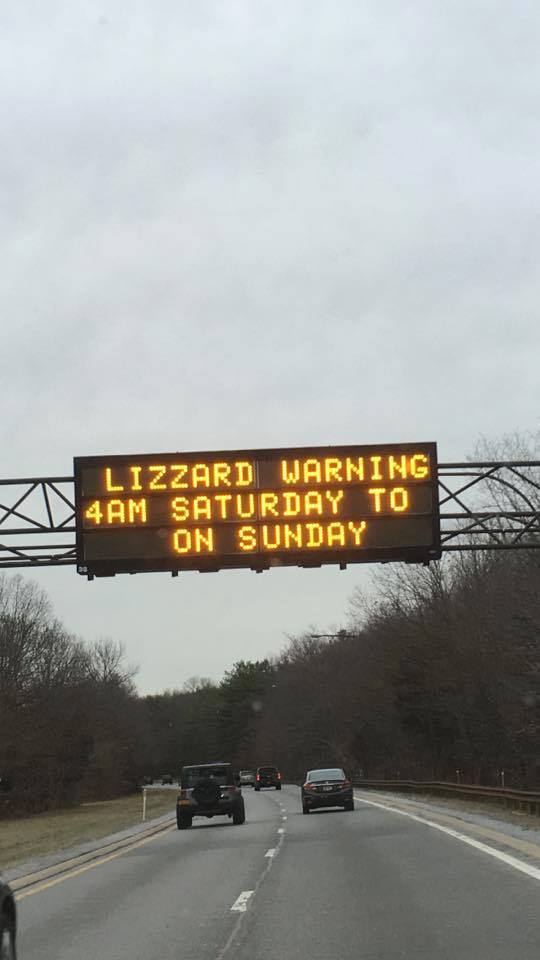 Watch out for the Lizards https://t.co/SNSyu9Lg0b
