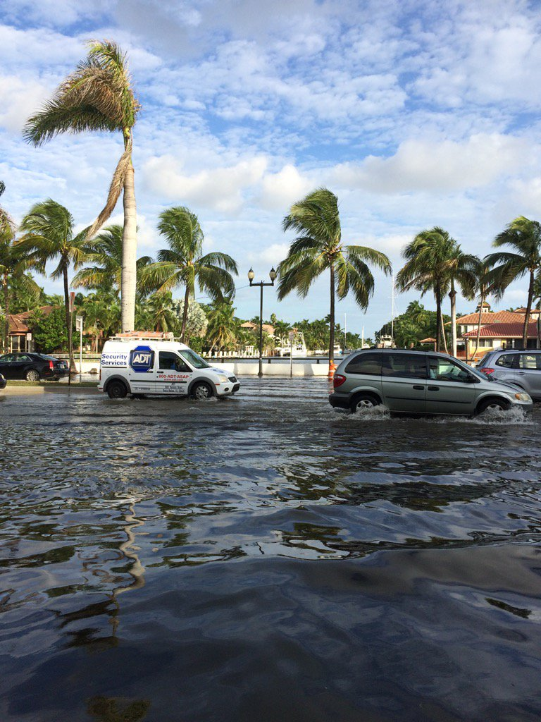 Salt water in Fort Lauderdale. Climate change impact. CCTV Sunday night on Americas Now. https://t.co/SlNswZ73kM