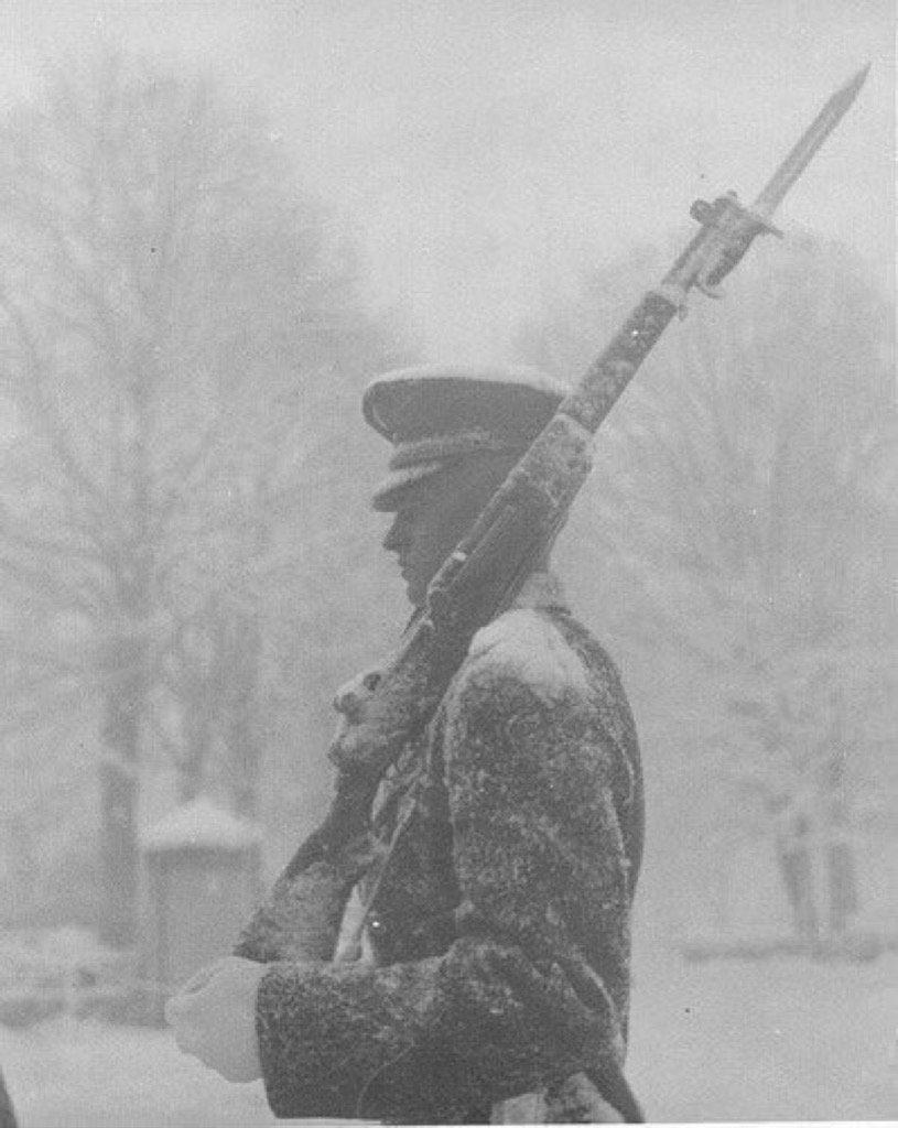 D.C. is covered in snow & government is closed but soldiers at Tomb of Unknown Soldier never quit. #jonasblizzard https://t.co/4UqsEPsfN2