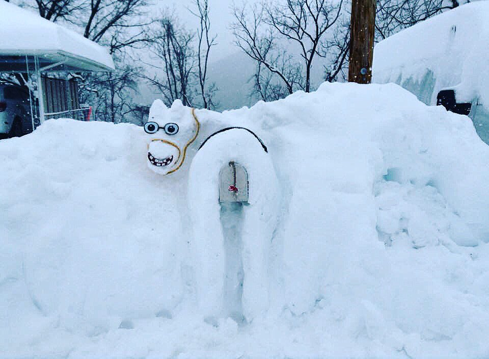 My aunt's #JonasBlizzard sculpture: pin the MAIL on the donkey!