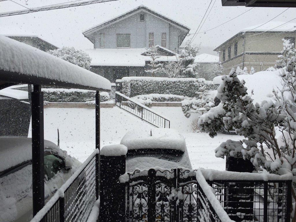 玄関を開けたら雪国www @福岡 https://t.co/yPgz0DEKm9