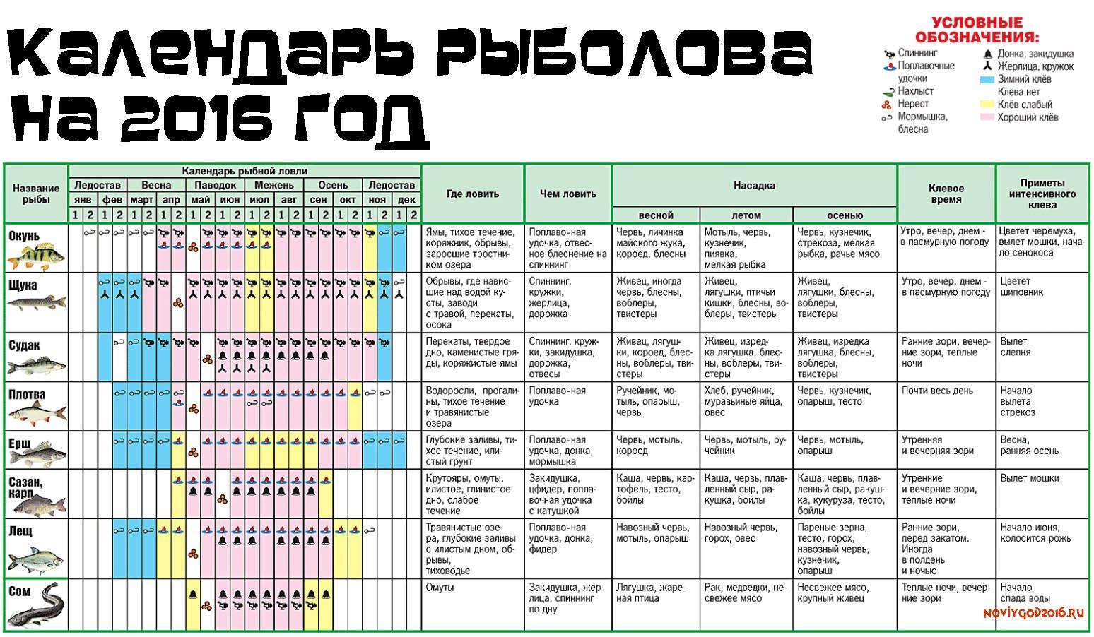Рыболовный календарь - пермский край
