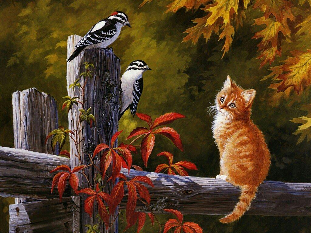 Фото открытки, открытки с природа с животными