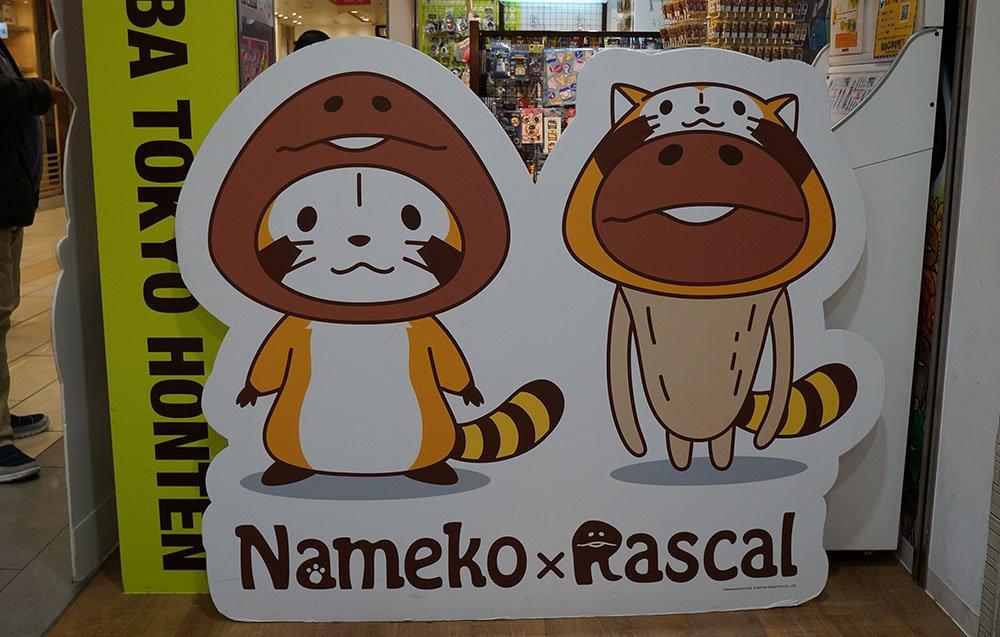 東京駅の地下で見つけた なめこの着ぐるみのラスカルと、ラスカルの着ぐるみのなめこ・・・ https://t.co/eXLgehd9Ay