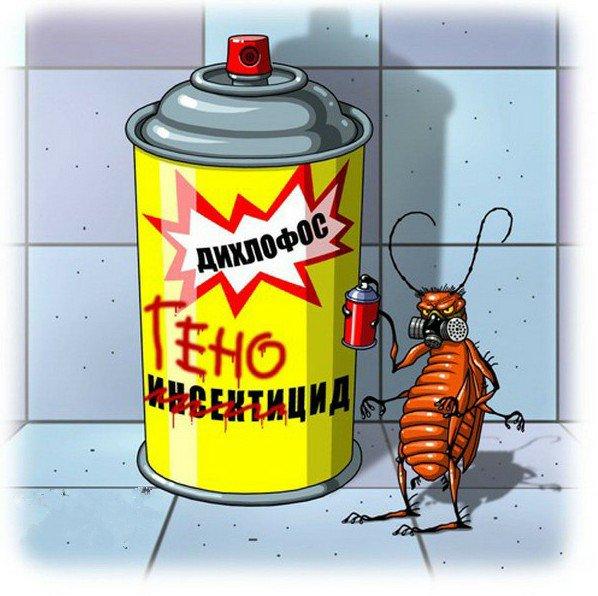 определенного прикольные картинки таракан изменений адаптация проектов