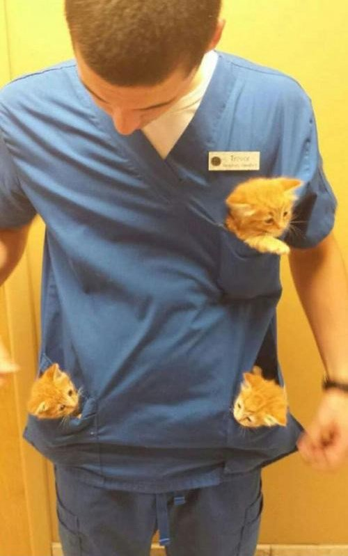Perks of working at the animal hospital. https://t.co/VRNYIxQ9lB