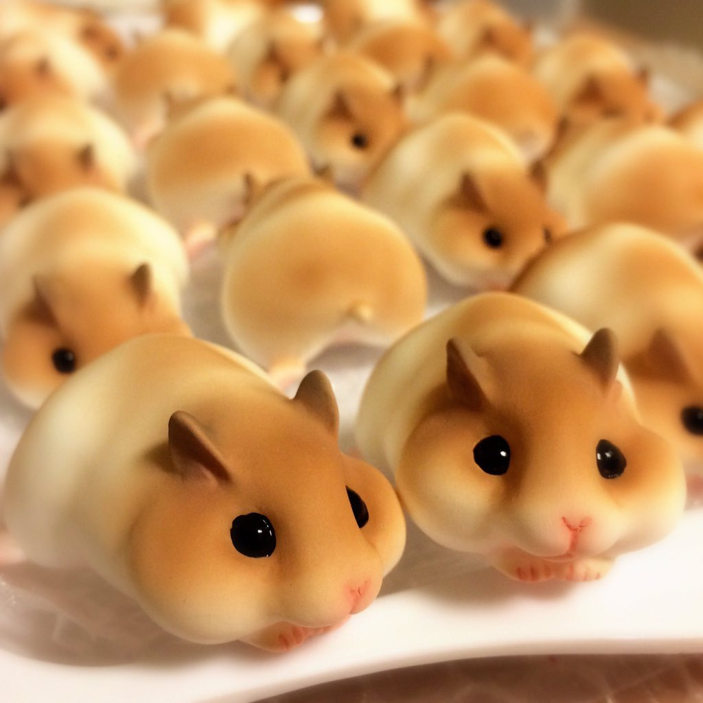 Can Hamsters Eat Cake