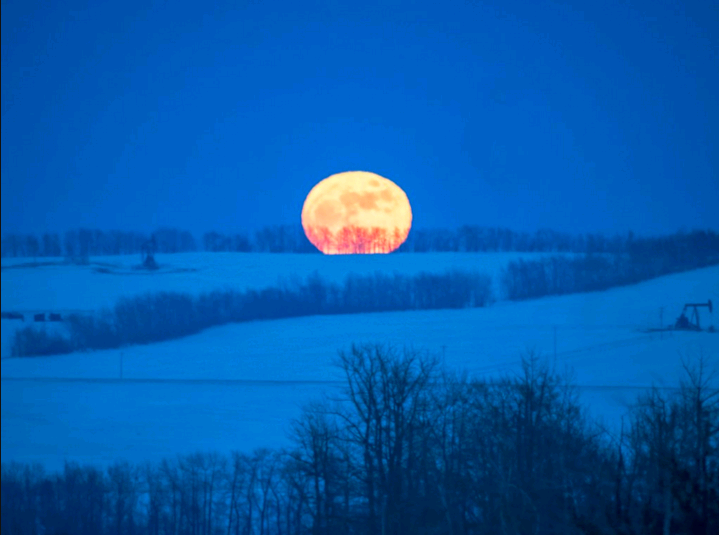 Did you happen to see the full moon this weekend? @RonRonprks  captured the lone 'wolf' over Bowden AB #wolfmoon
