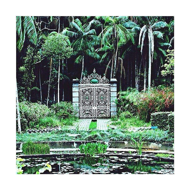 Parabéns São Paulo! Tour 462 Anos - Jardim Botânico  #sp #tour462 #aniversariosp #birthday… http://ift.tt/1Sep6q8