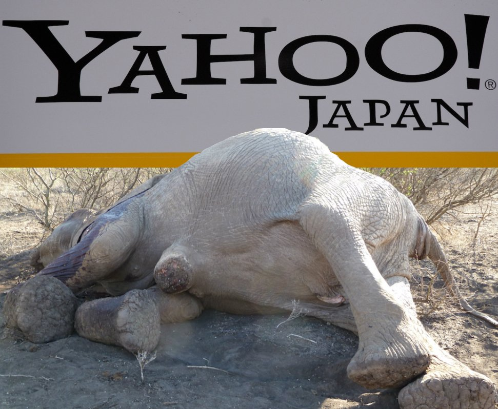 PETITION: A million+ sign call for Yahoo! to stop profiting from blood #ivory sales https://t.co/luwKtgNofy https://t.co/9amhOCU06k