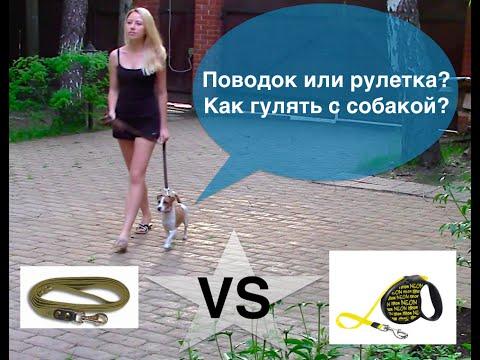 поводок-рулетка для собак схема