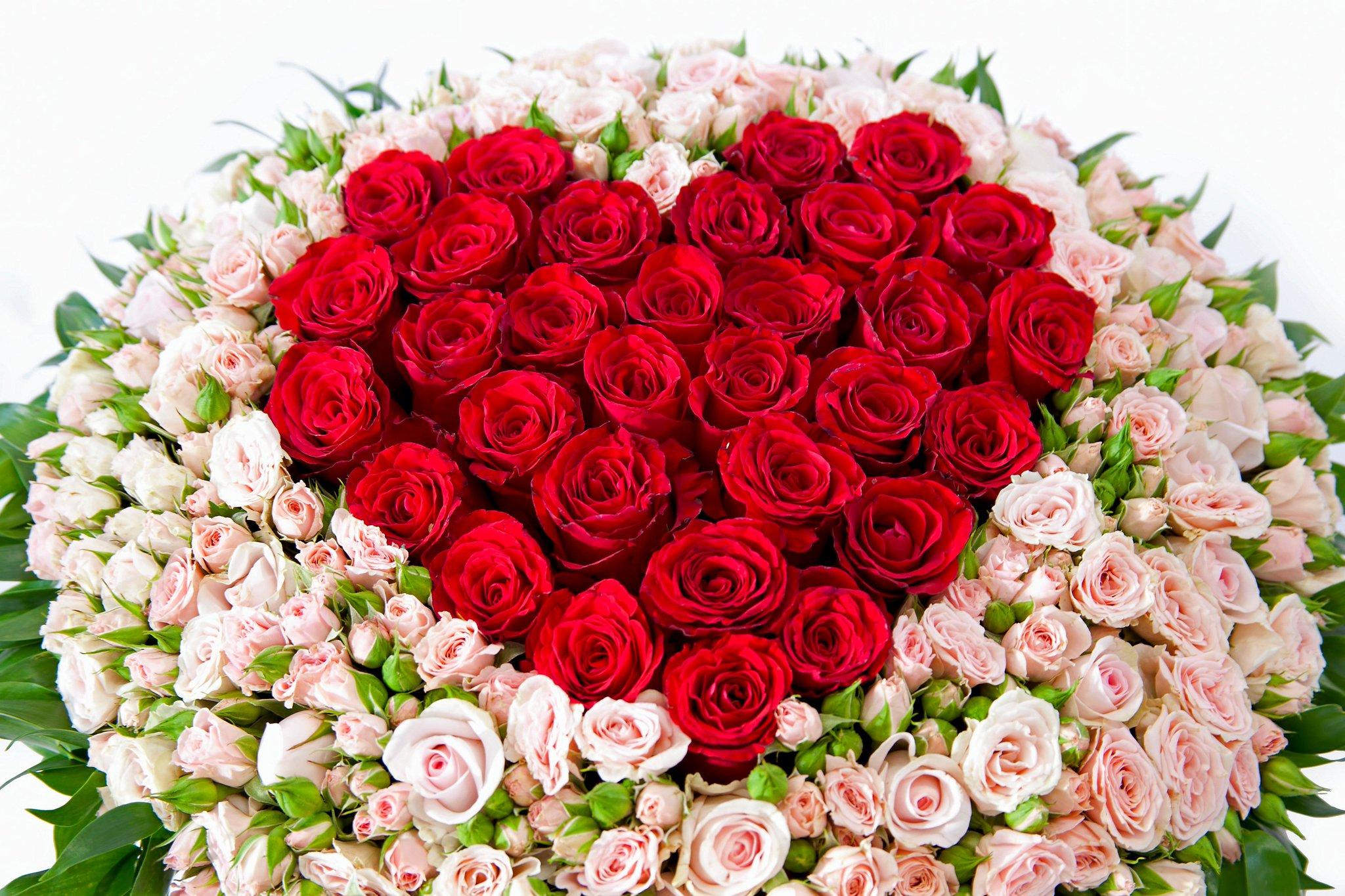 Картинка с днем рождения много роз
