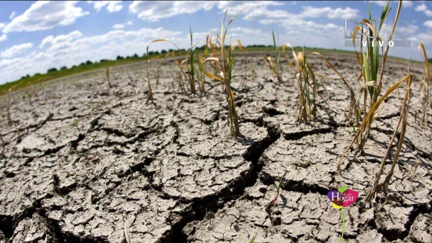 """Cambio climatico: """"siamo a rischio distruzione"""""""