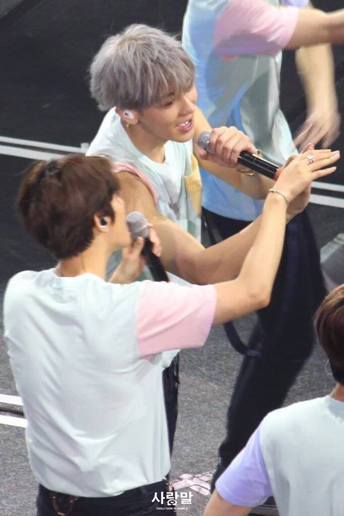 ChanBaek we can clearly see how much you love each other so pls stop denying it https://t.co/w42WC1QcXX