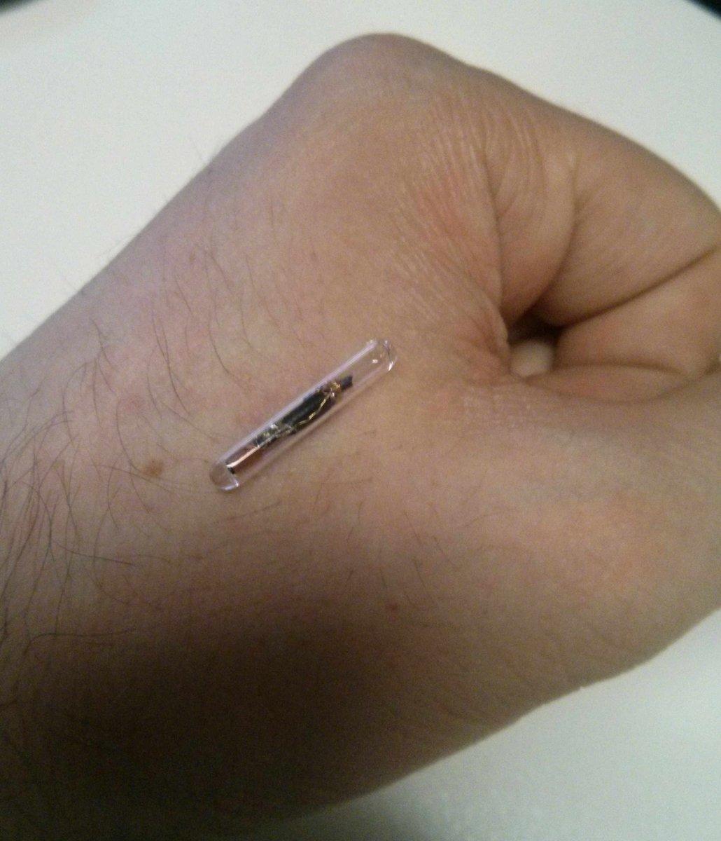 BirdMachine At 3x17mm It Is Big But Still Safe To Implant Whats Nextpictwitter PJSVCFdnRx