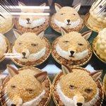 ニッチすぎる!東急ハンズ池袋店にニッチアニマルズのケーキが登場!