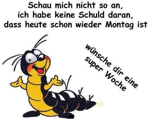 Schnattchen On Twitter Guten Morgenmein Hase