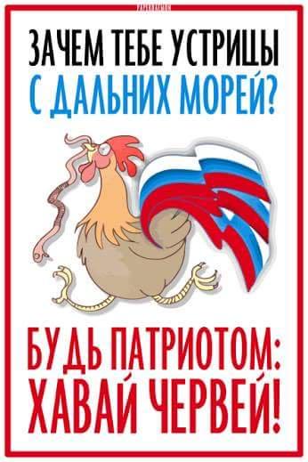Российских детей в школе и суворовском училище Ульяновска неоднократно кормили продуктами с червями - Цензор.НЕТ 7572