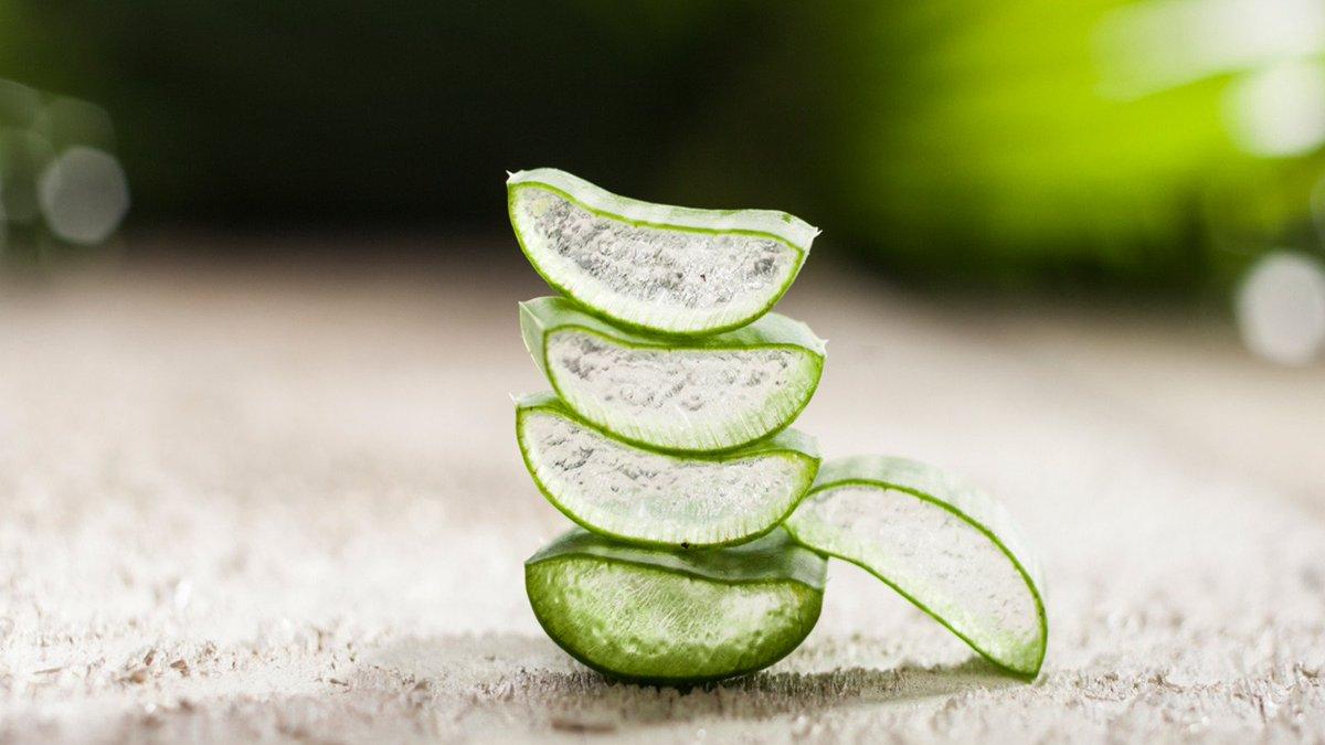 Abnehmen mit Aloe Vera-Gel: So funktioniert es! #beauty #healthy https://t.co/XXpCYpkkgU https://t.co/NLOB1mvTM1