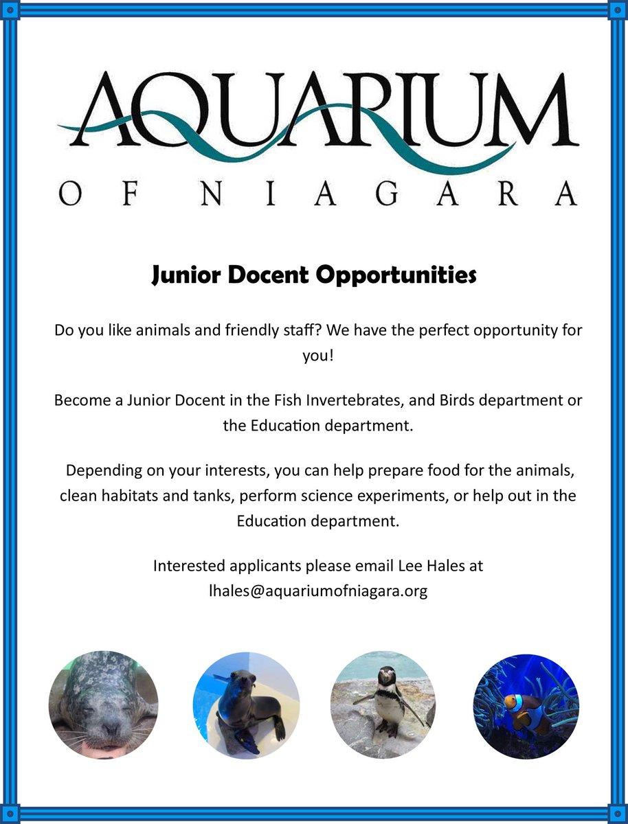 Fish aquarium in niagara falls - 0 Replies 1 Retweet 1 Like