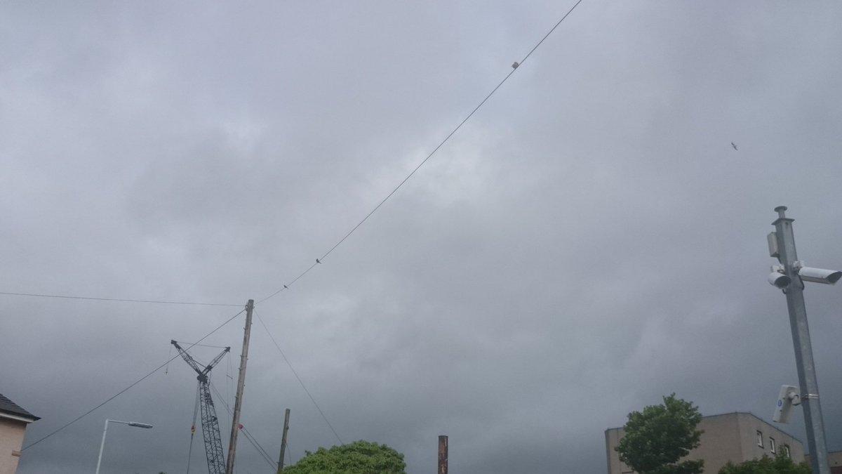 3 #greenfinch serenading from #Burntisland #station wires #BirdingByRail #ScotlandByRail @ScotRail @Natures_Voice @BBCSpringwatch @_BTO @FFP<br>http://pic.twitter.com/Bqjq40df9Q