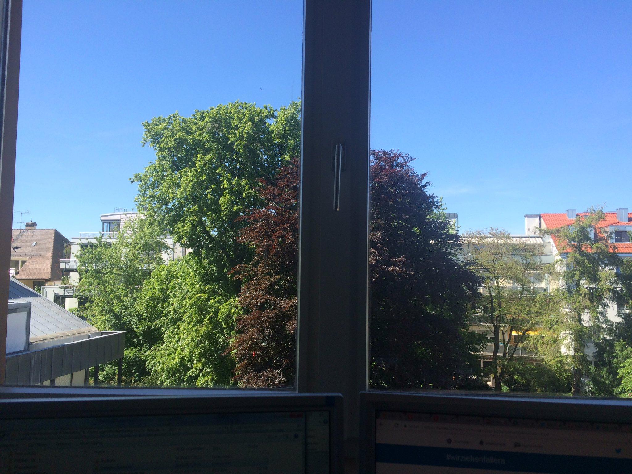 Wettercheck aus dem Büro @Kunsthalle_Ka Genauso kann es bitte bleiben, vor allem zu #wirziehnfallera mit den @herbergsmuetter n am Freitag☀️ https://t.co/H7WsVMTax5