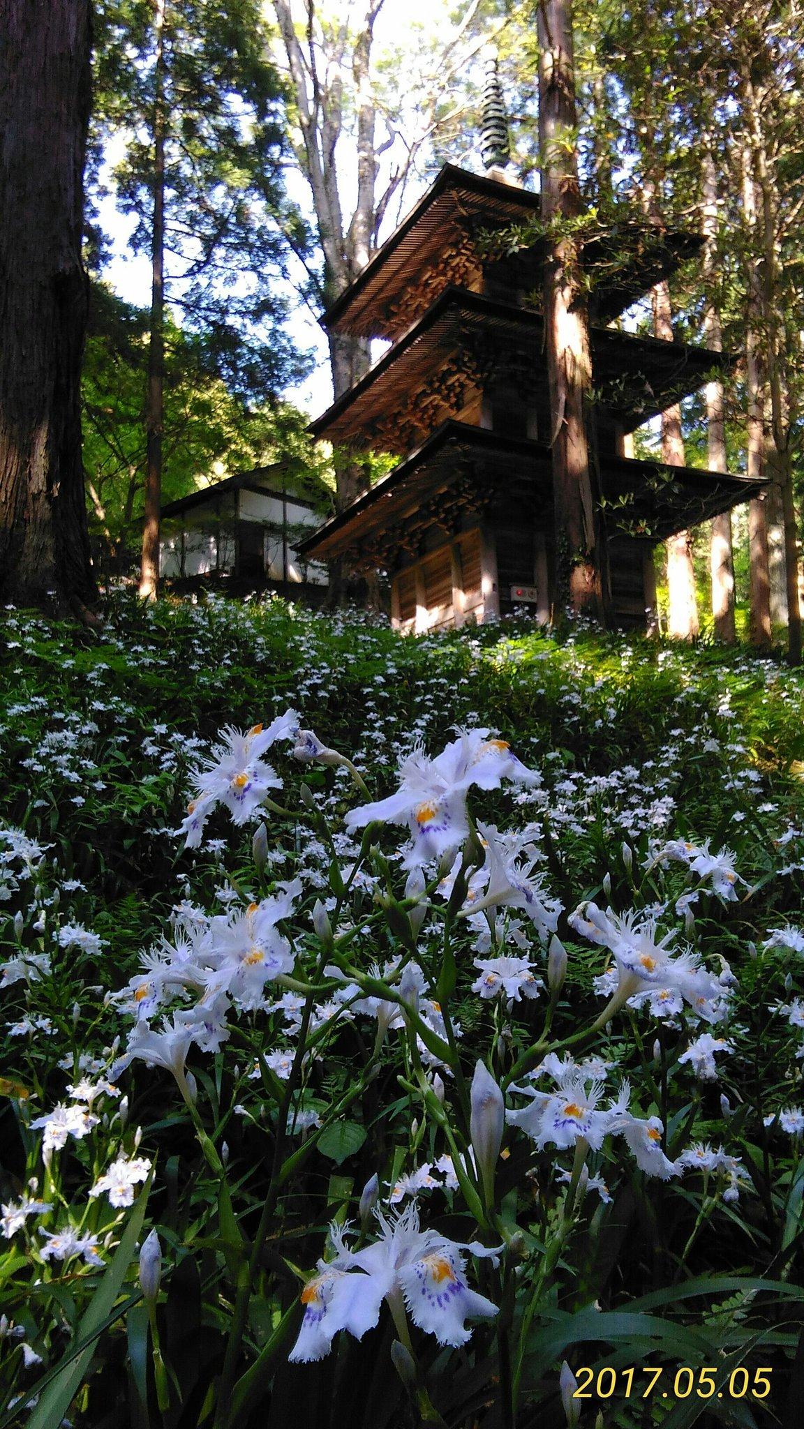 高蔵寺のハナカツミ(いわき)
